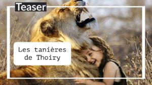 Les tanières du zoo de Thoiry